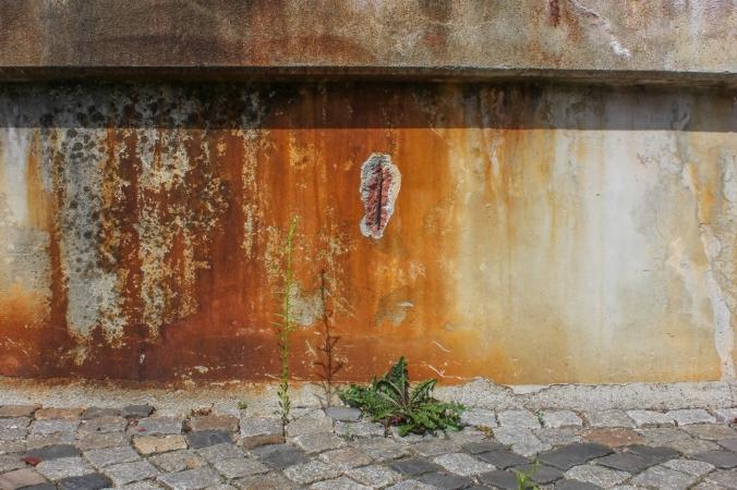 Mona Dee photography  rust Berlin a