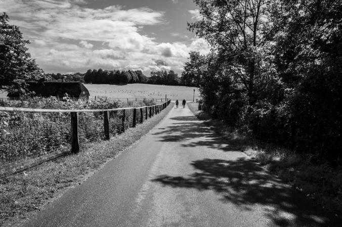 mona-dee-photography-paths-1