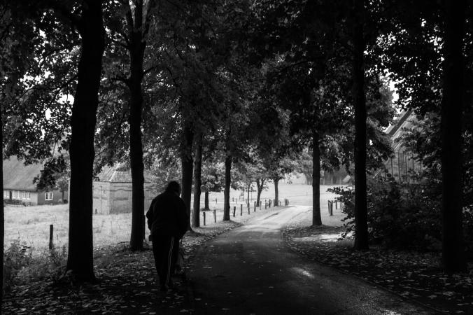 mona-dee-photography-paths-3
